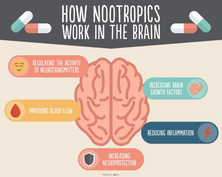 how-nootropics-work-in-the-brain-768x614.jpg