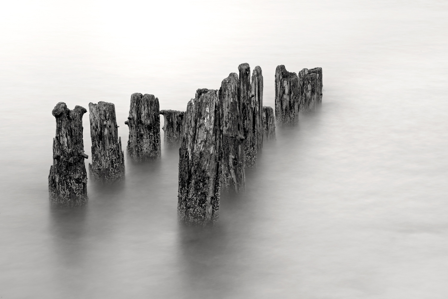 seward-alaska-long-exposure-pilings- (1 of 1).jpg