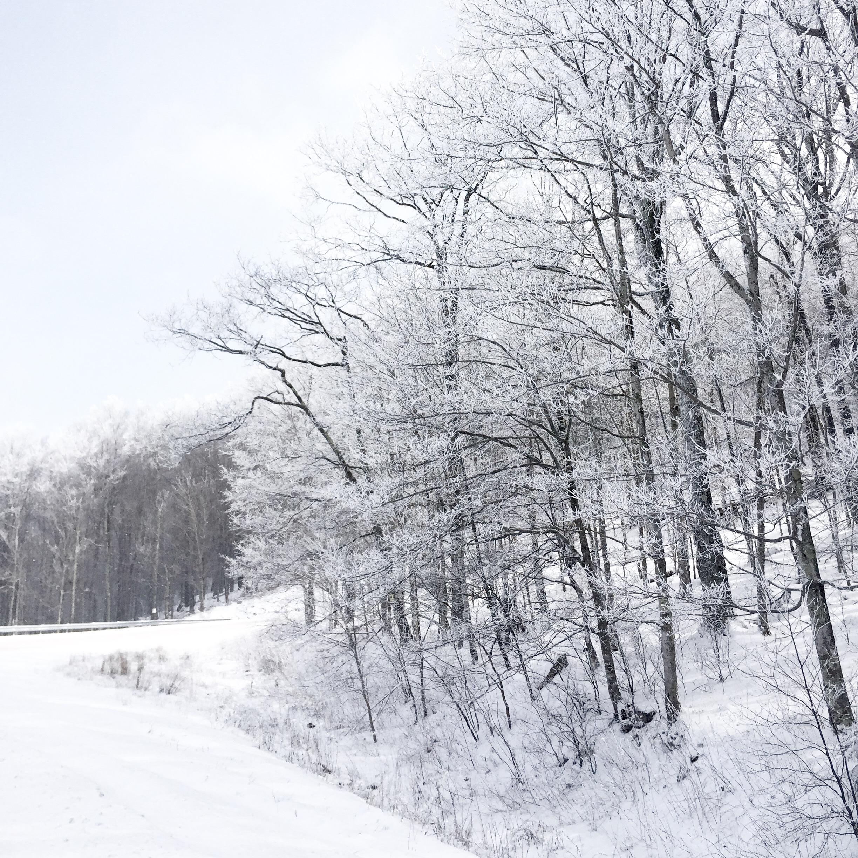 Road to Snowshoe mountain