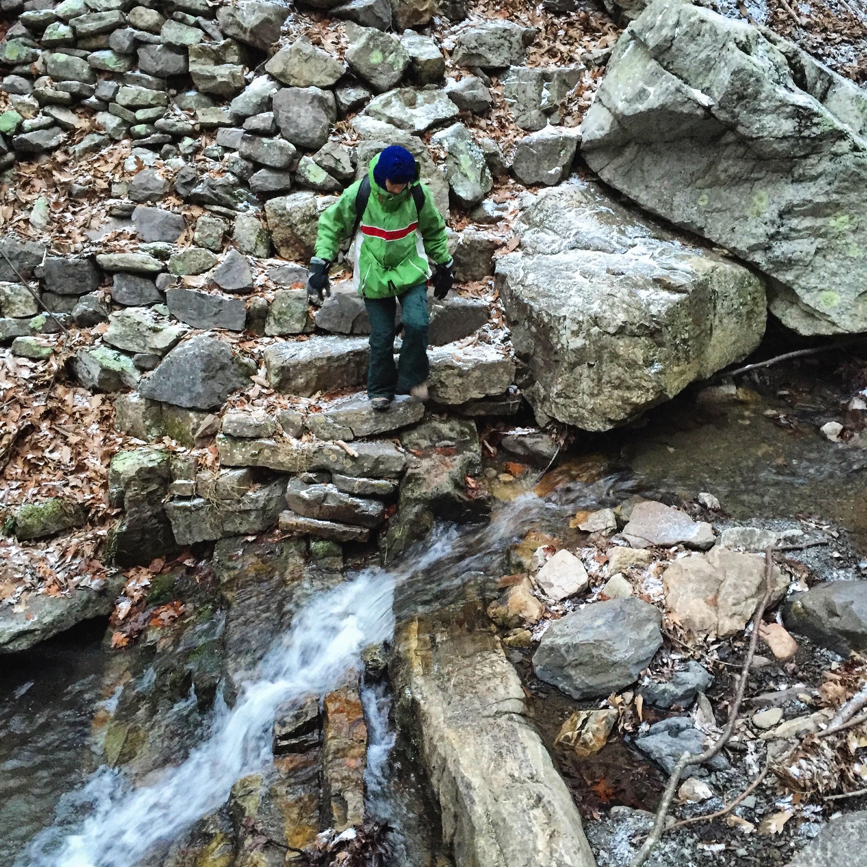 Creek at Seneca Rocks Trail (east side)