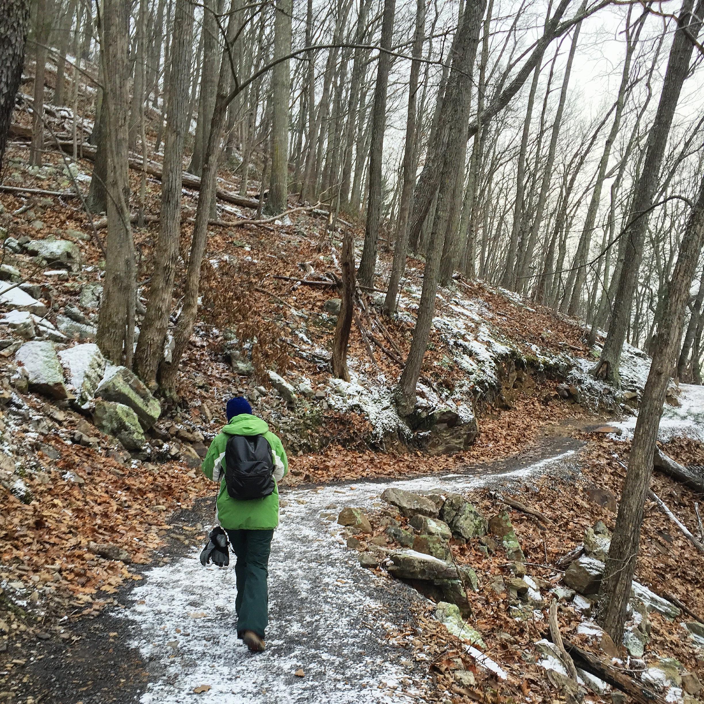 Seneca Rocks Trail Winter