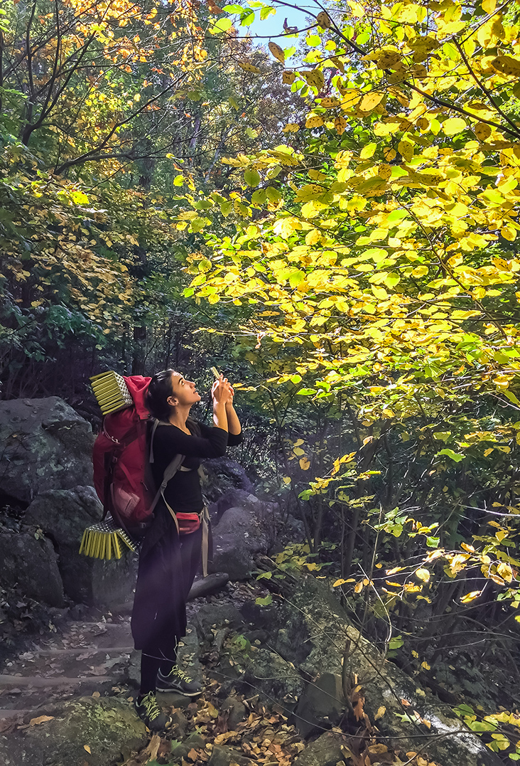 Admiring fall colors - Old Rag Mountain
