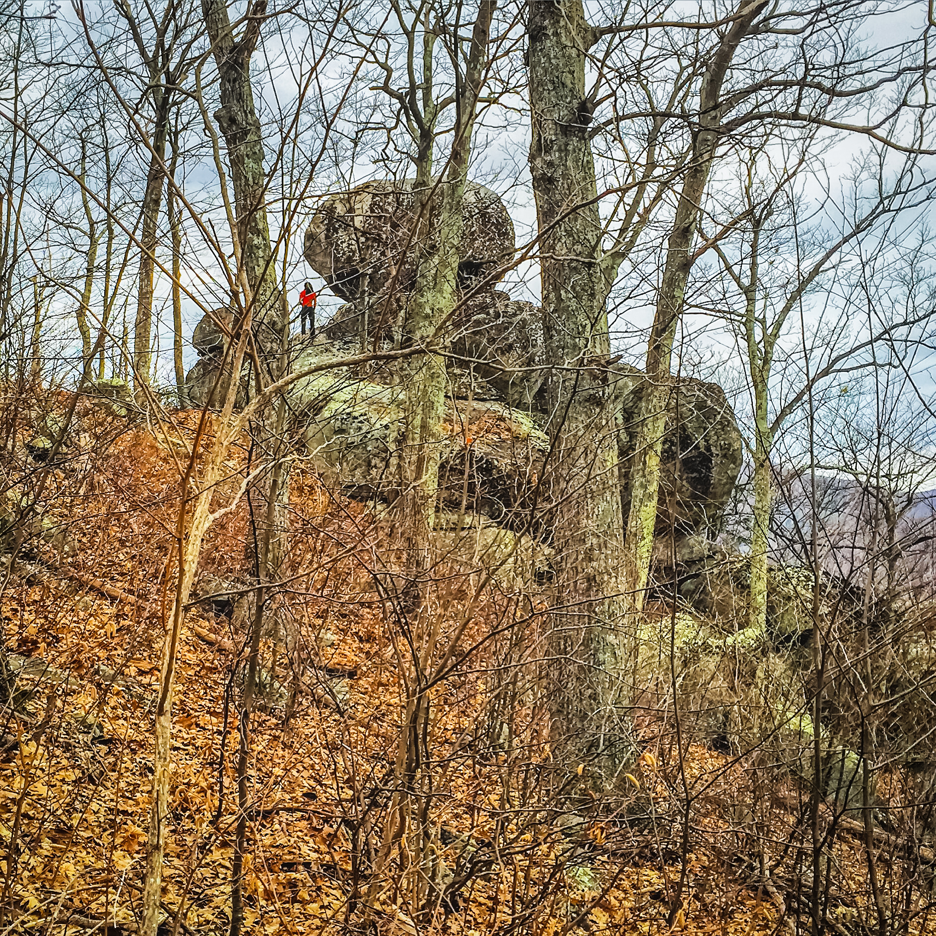 Bushwhacking to Balance Rock