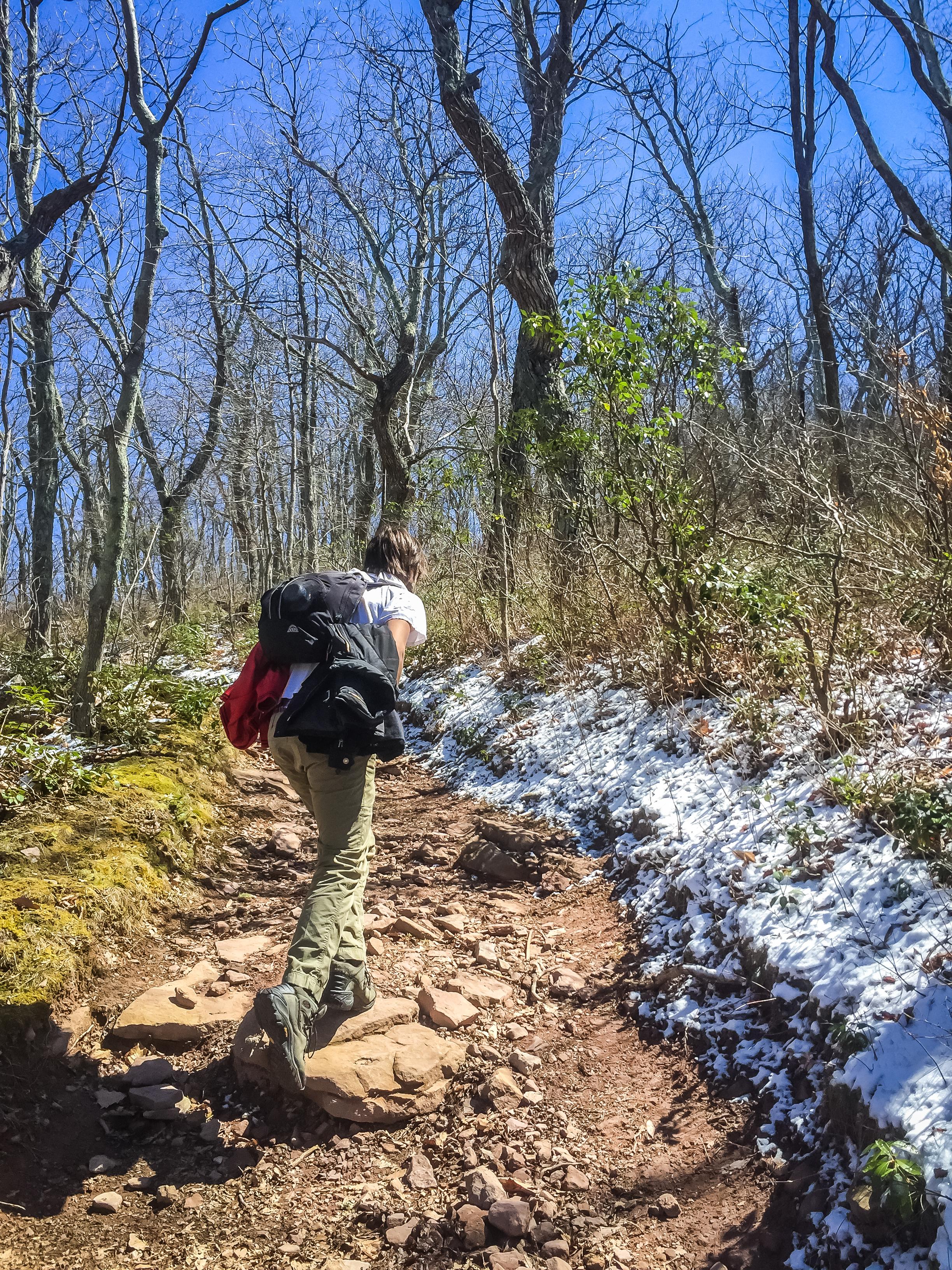 Hiking upward the Mill Trail