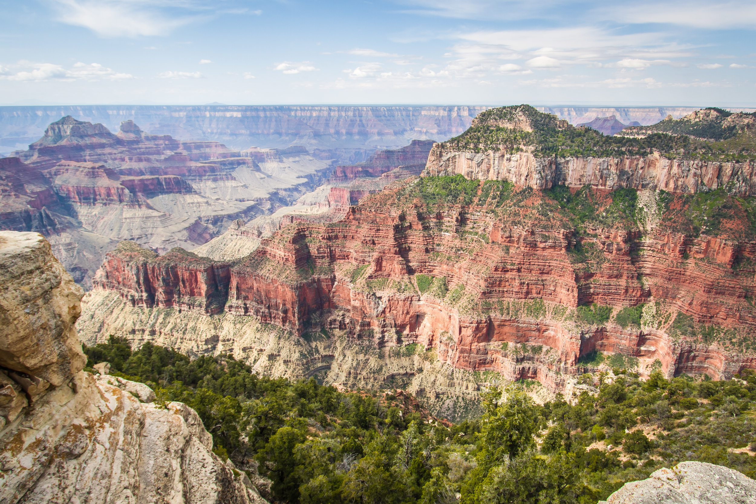 Borda Norte do Grand Canyon - North Rim