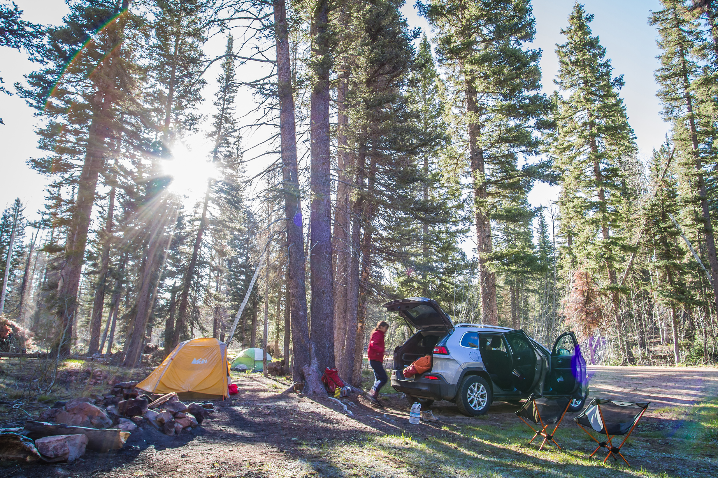 Camping in the woods. Grand Canyon's North Rim