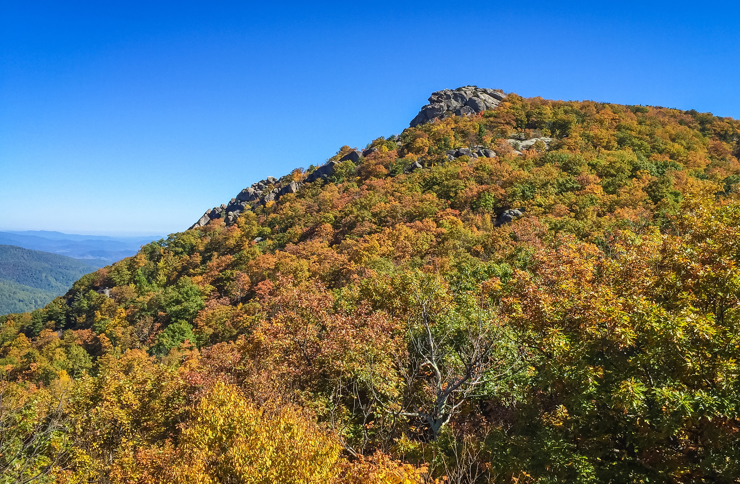 View from Birds' Nest - Old Rag Mountain, Virginia