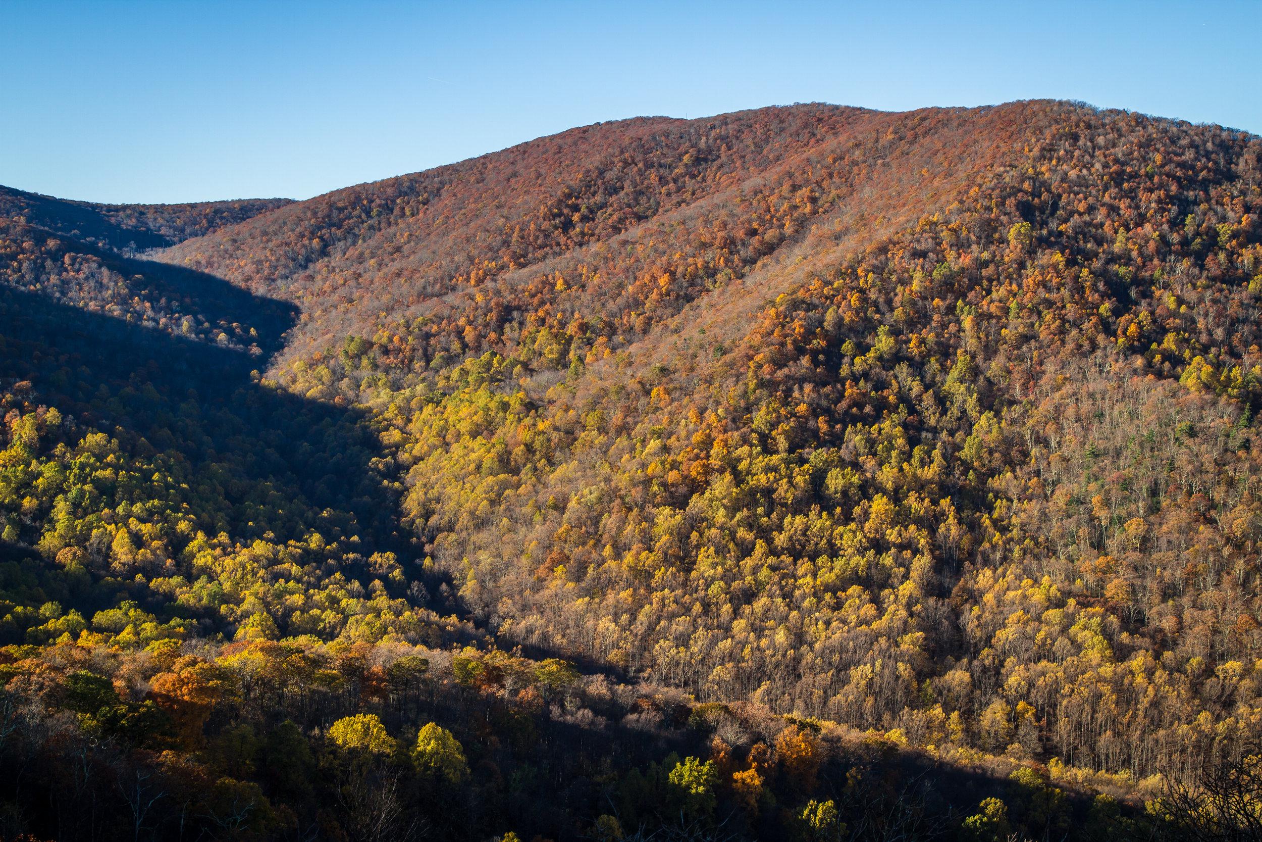 Views from Bear Church Rock, Shenandoah, Virginia