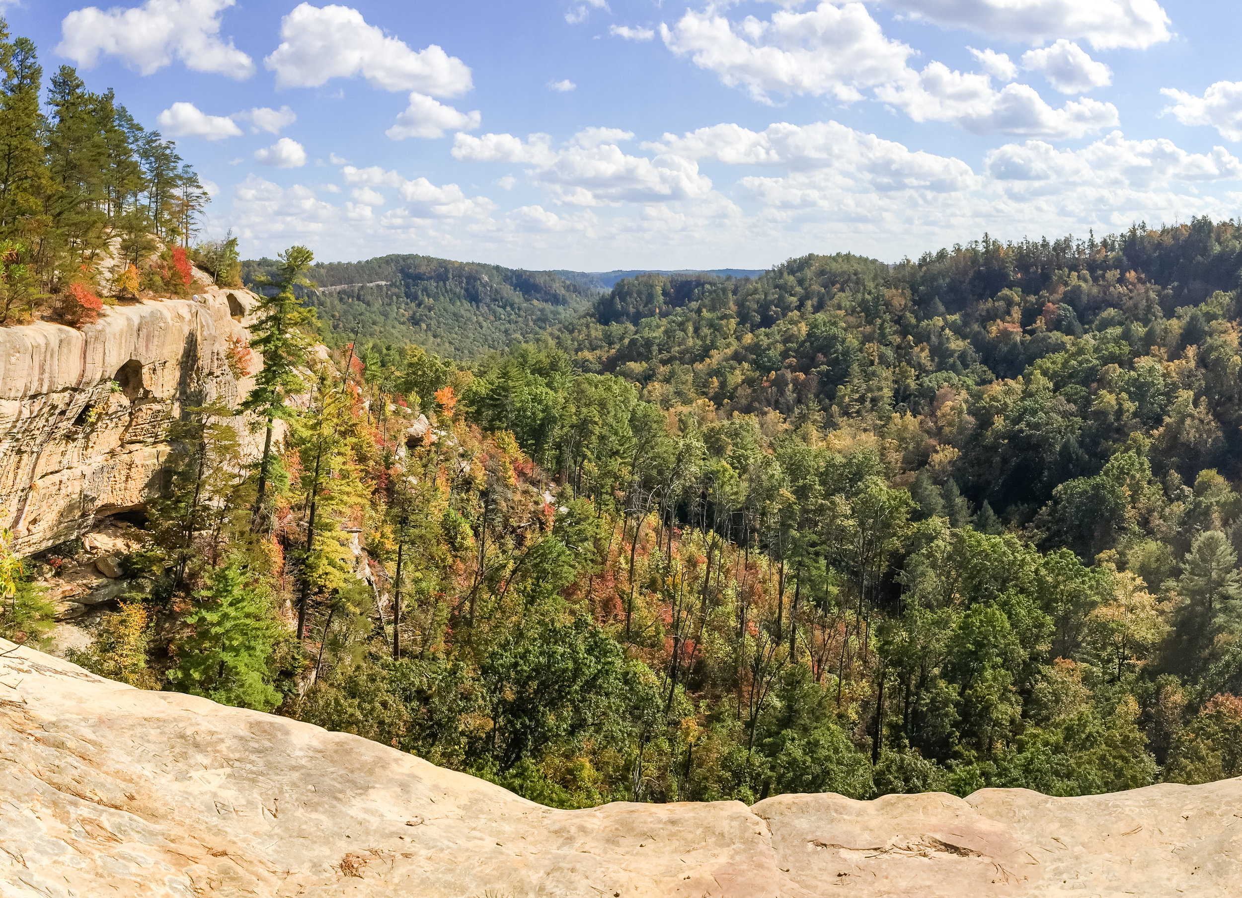 Views from Indian Staircase hike in Red River Gorge, Kentucky