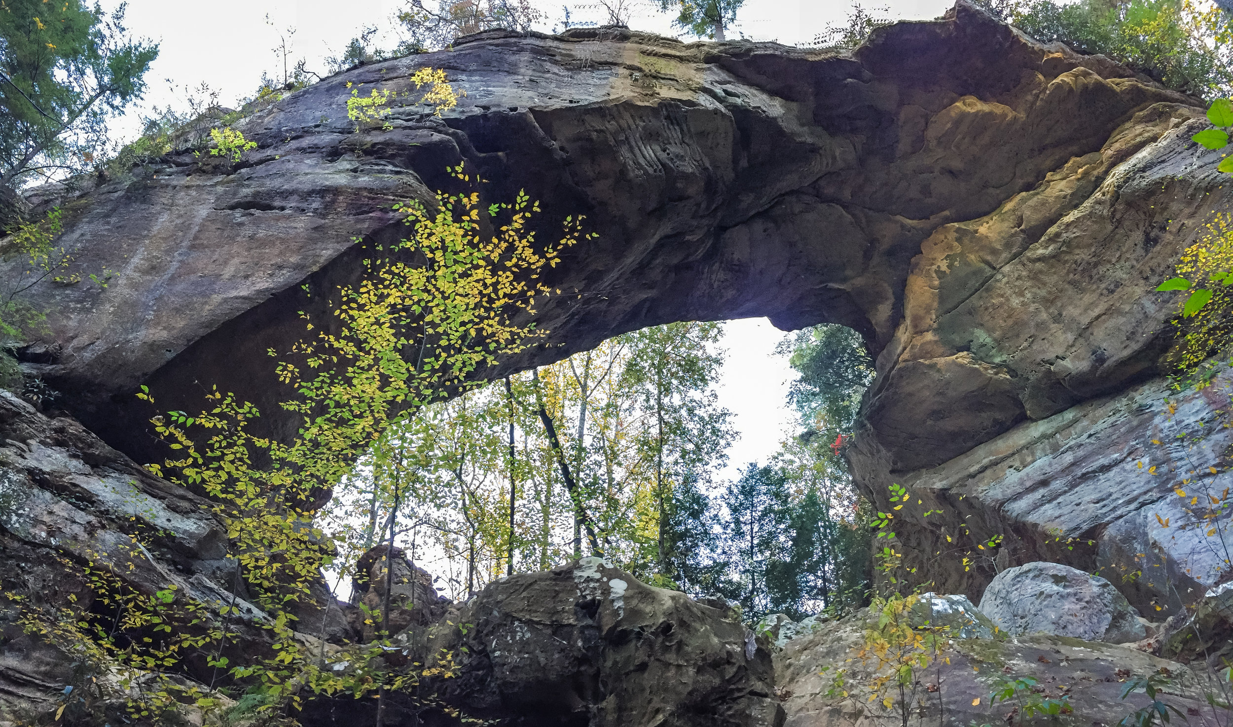 Gray's Arch in Red River Gorge, Kentucky
