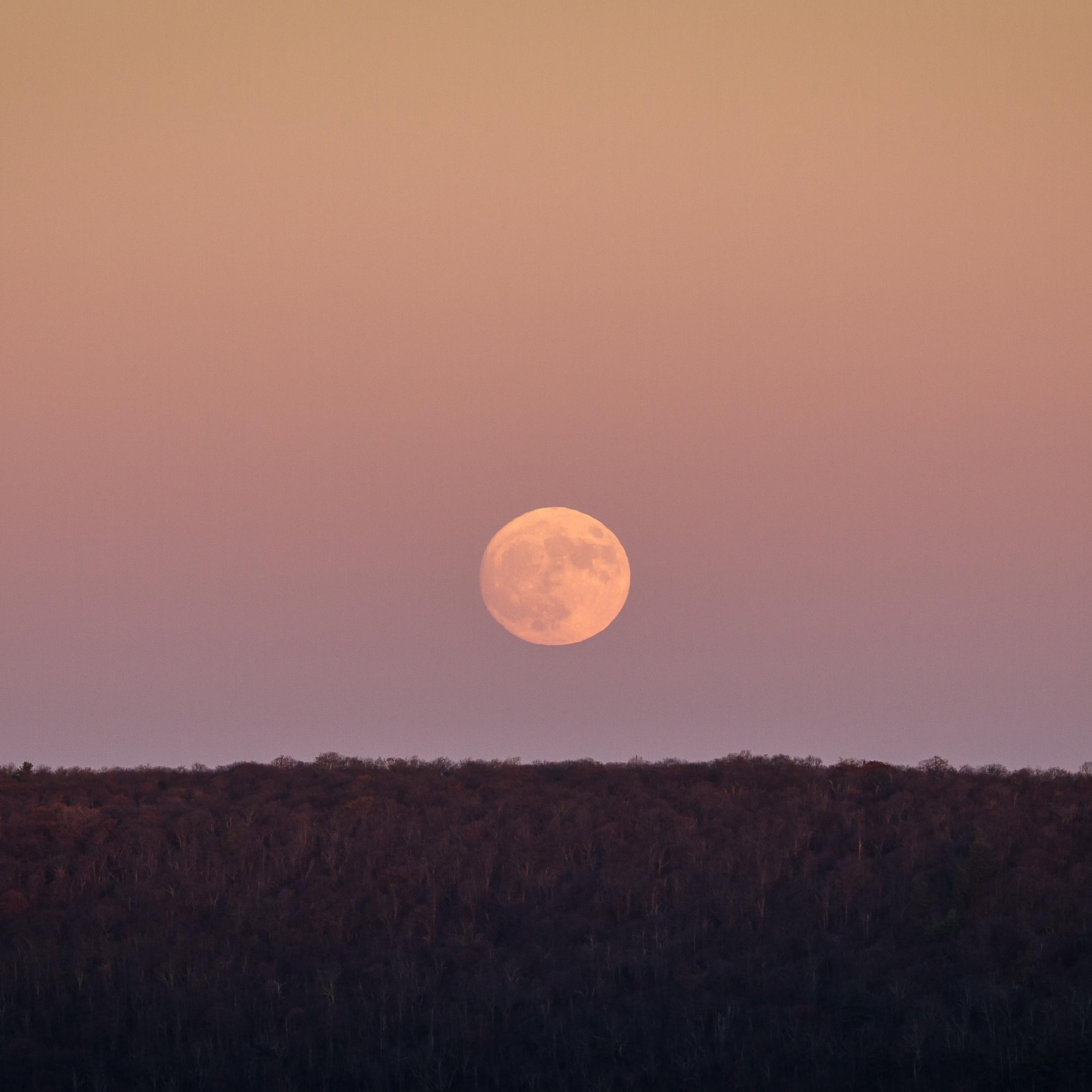 """Supermoon"" rise at Big Schloss peak, George Washington National Forest"
