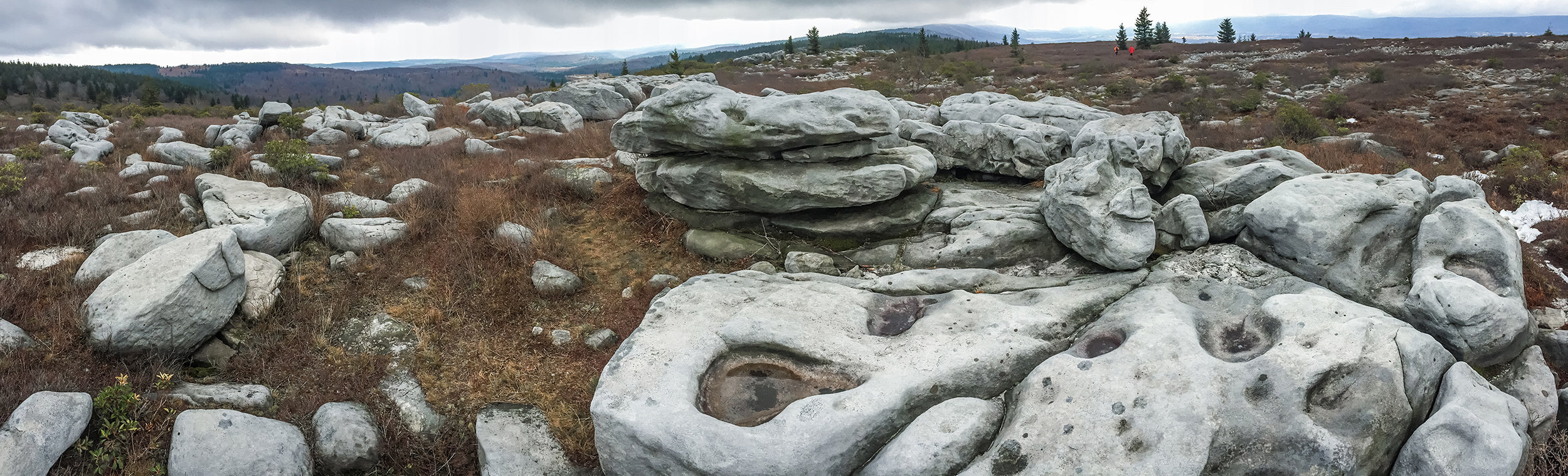 Rocks at Canaan Valley Overlook, Dolly Sods