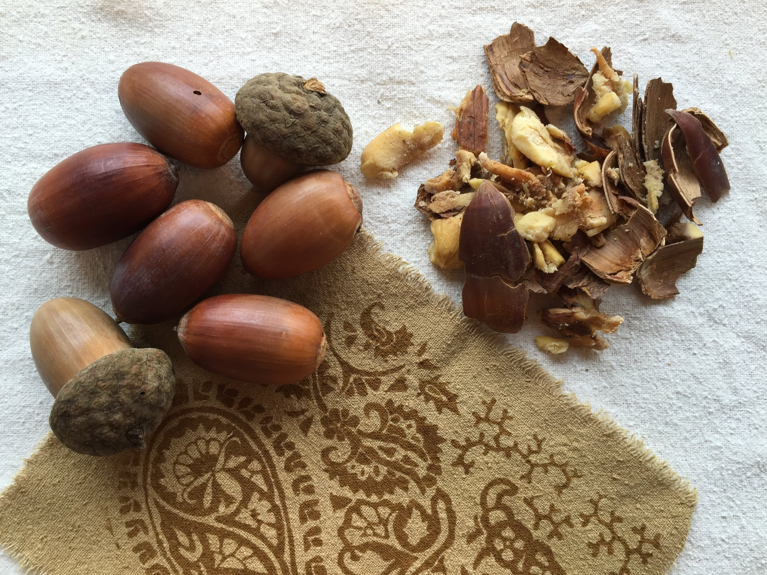 Acorns and the resulting fabric