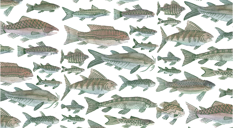 Patterns25.jpg