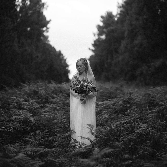 Little bit in love with ferns! And tree lines... and phenomenal #brides.