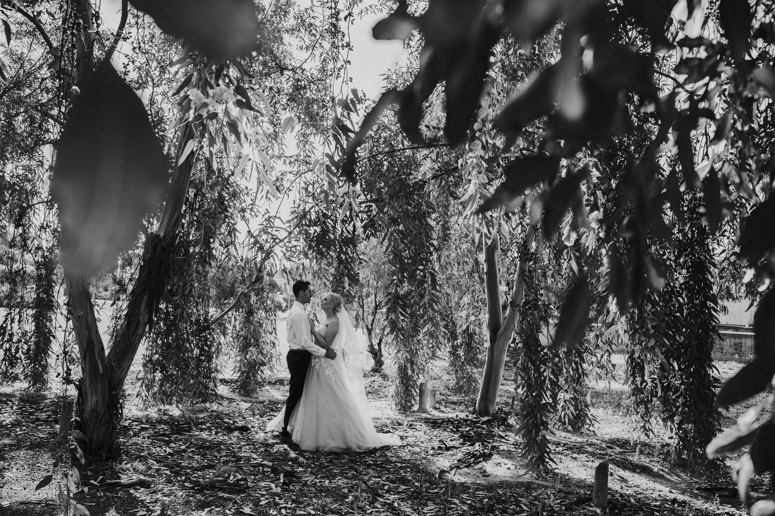 MelissaBrownPhotographer_020_SouthAustralia.jpg