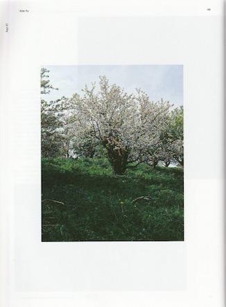 Aluan-ADA-YU-Press-8.jpeg