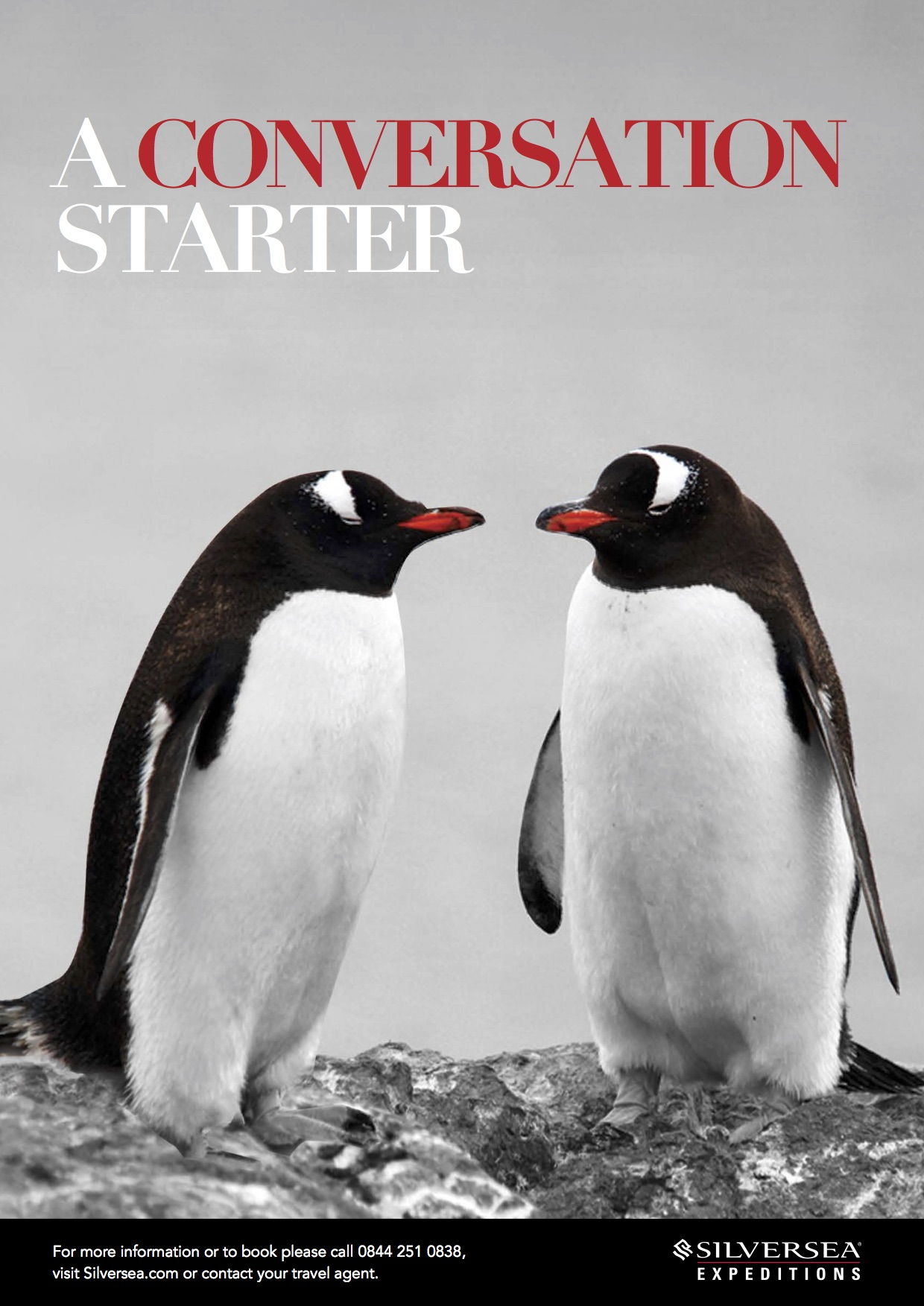 Expedition Advert - A CONVERSATION STARTER.jpg