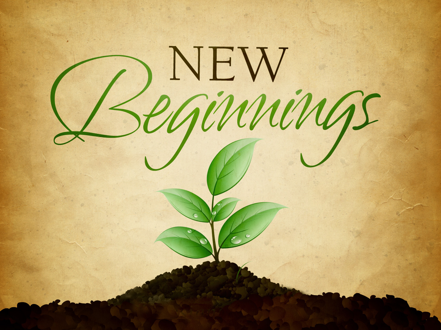 new-beginnings_t_nv[1].jpg