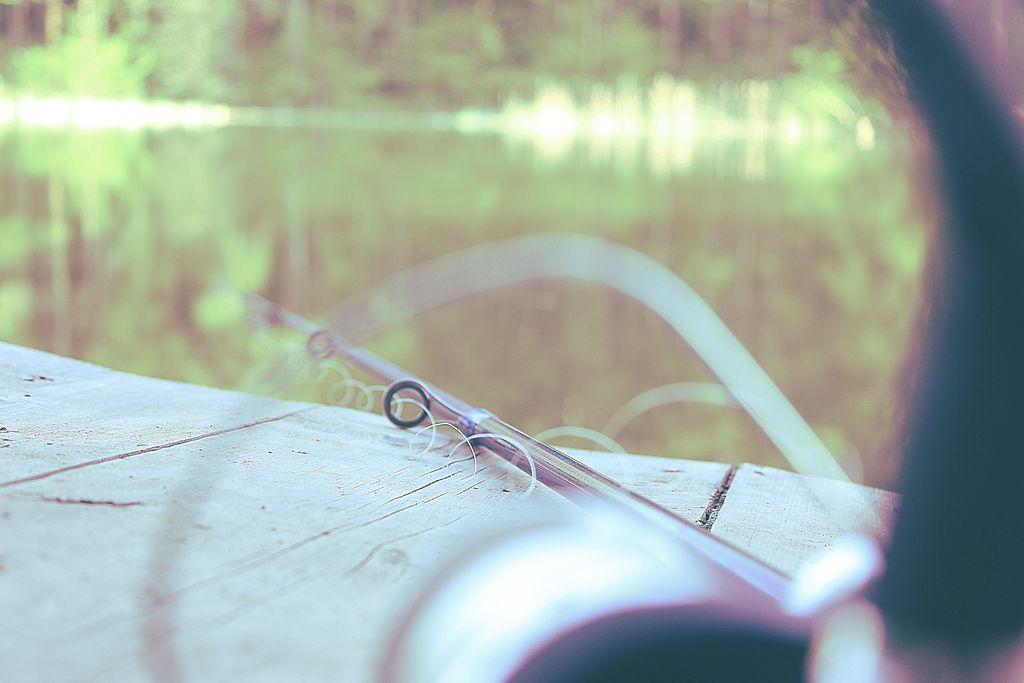 Stare Jablonki ryby.jpg