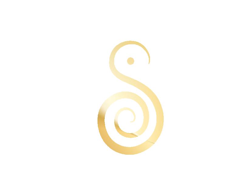 logo Shandora
