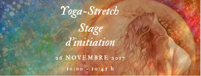 yogastretch 26 nov 17 pour eventbrite.JPG