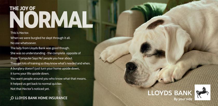 Lloyds Bank Dog photo advertisement