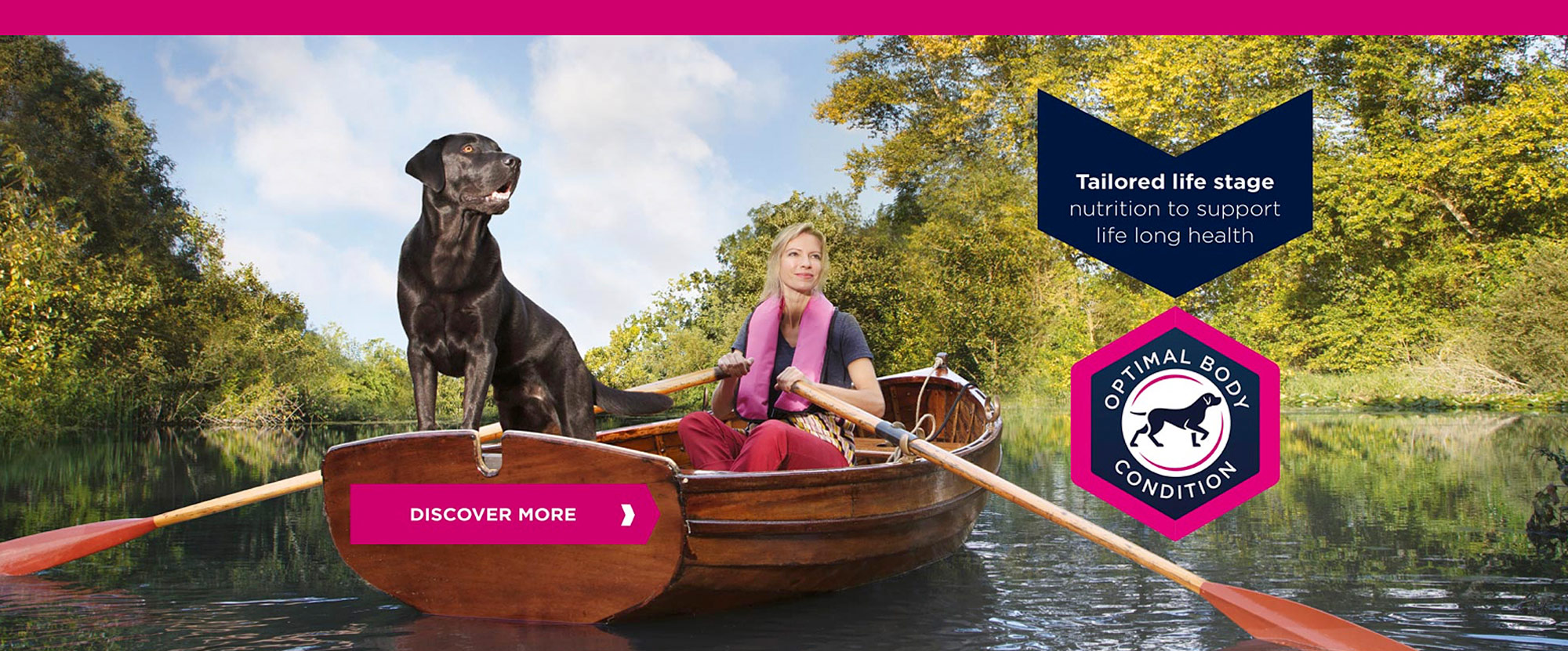 Boat&dog.jpg