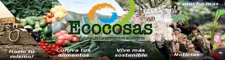 www.ecocosas.com