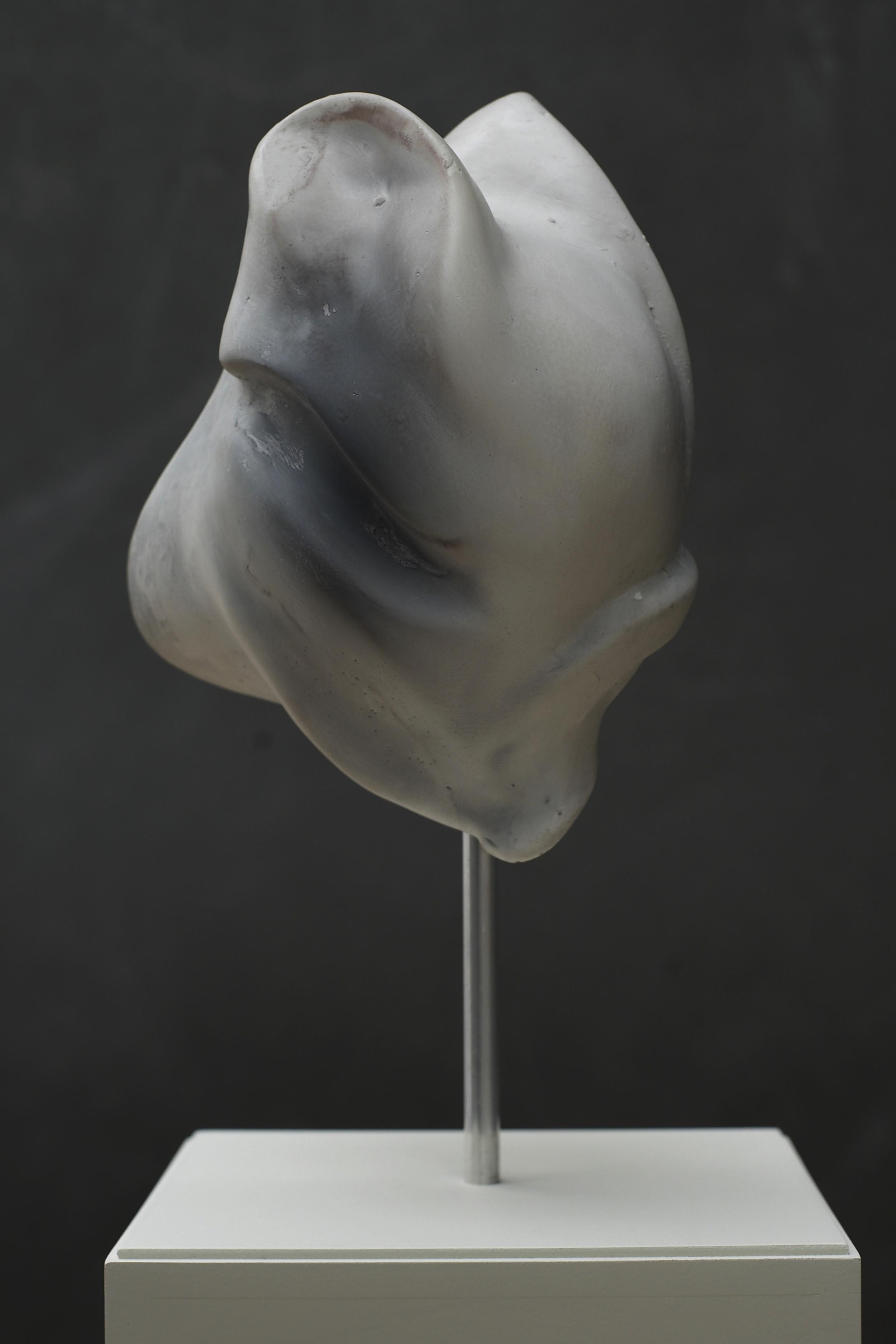 hoi polloi (006) 2010