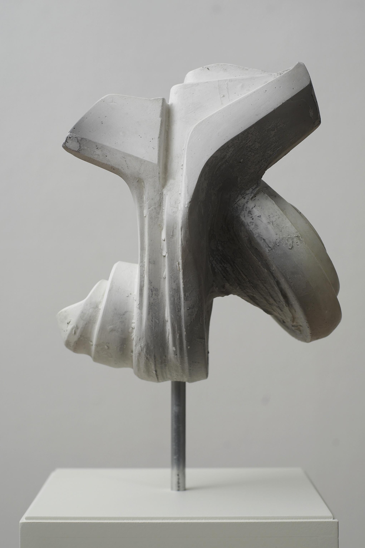 hoi polloi (009) 2010