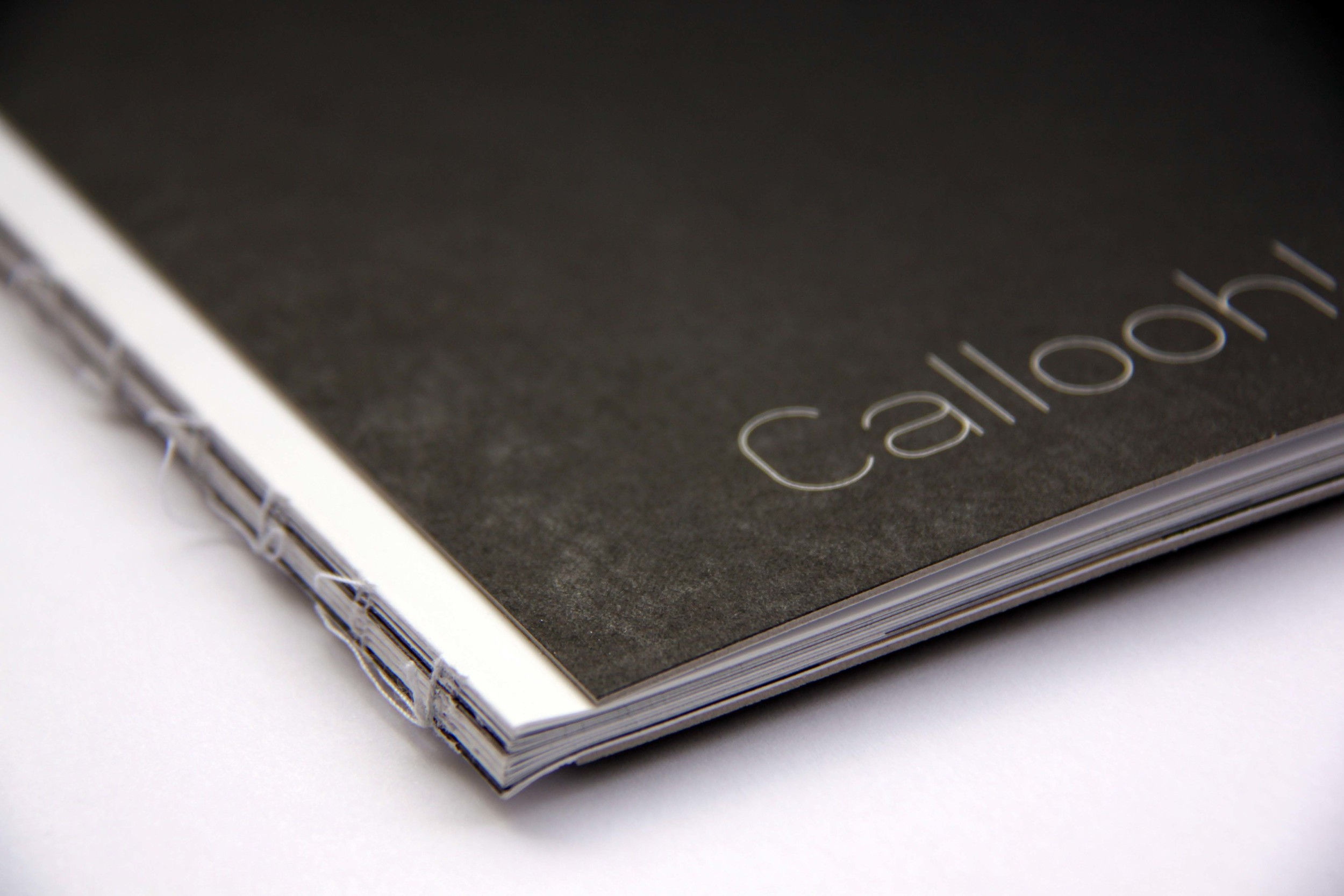 callooh catalogue cover 2.jpg