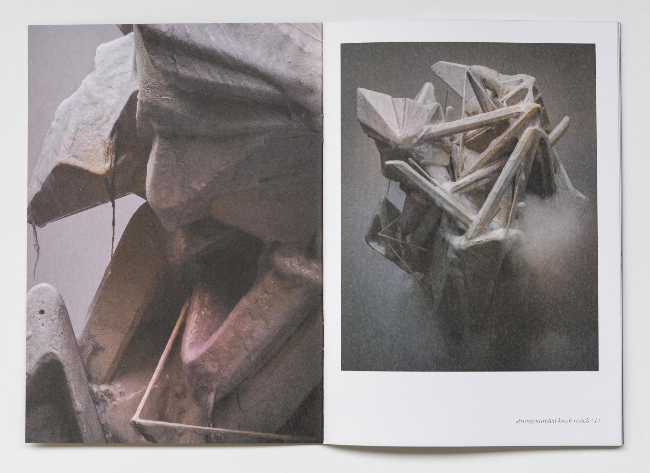 michael kutschbach mad odor roses catalogue-2.jpg