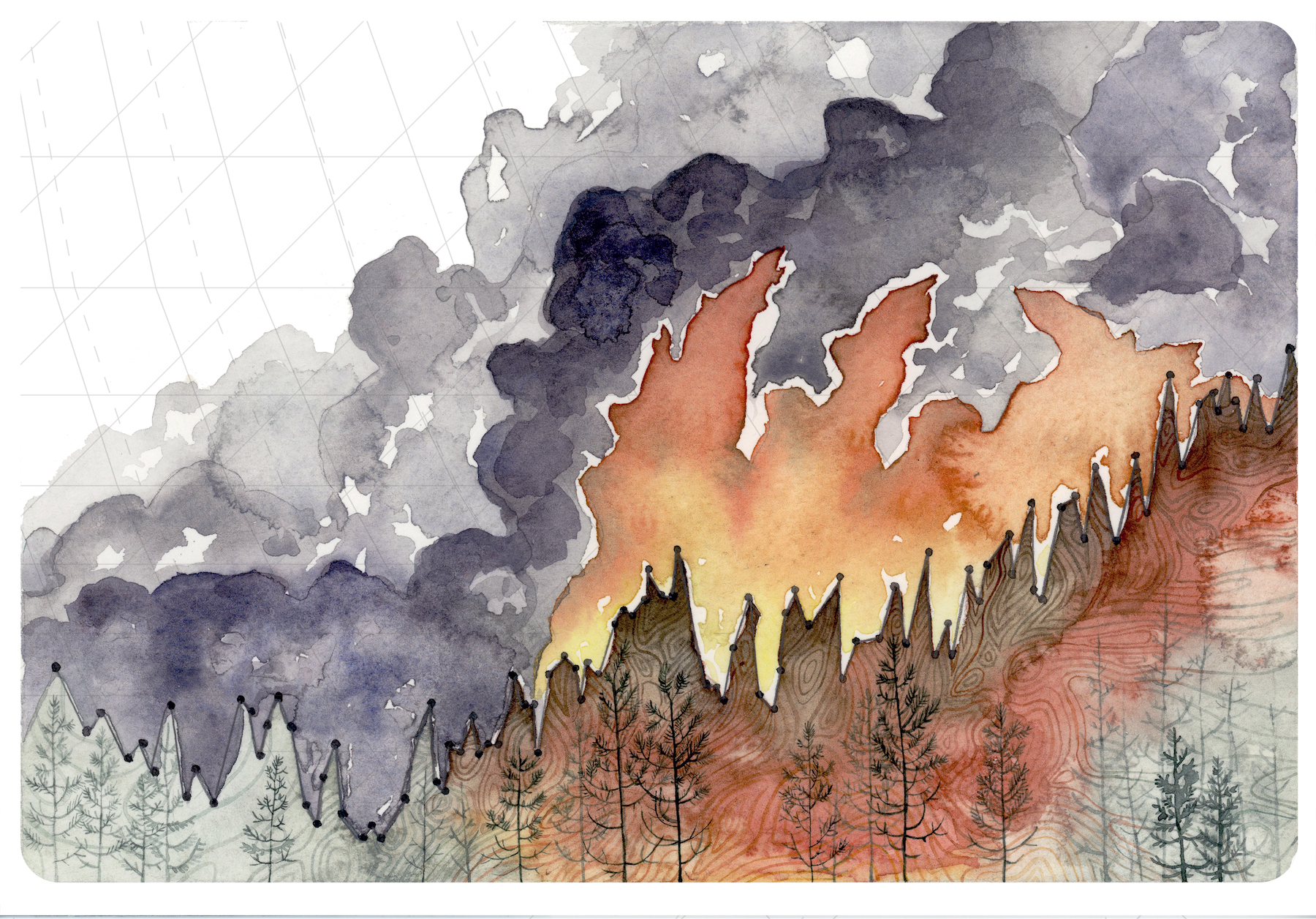 I created a series about some of the major impacts of global warming that I witnessed in Washington State this summer, using scientific data to show how the drought is devastating the state.   Increasing Forest Fire Activity  uses global temperature rise information. Fortunately,   I was not near any of the massive forest fires that raged before, during, and after my two weeks in Washington summer 2015, but I was greeted with many smoke-filled days. On some days, when the winds blew from the fire toward us, the smell and taste of the smoke overpowered my senses, even though the fire was about 100 miles away. As temperatures increase, and drought and drier than average conditions persist, forest fires become a huge threat to the forest, plants, animals—and of course to people and structures.  Reference: http://www.climatecentral.org/gallery/graphics/rise-in-global-temperatures-since-1880