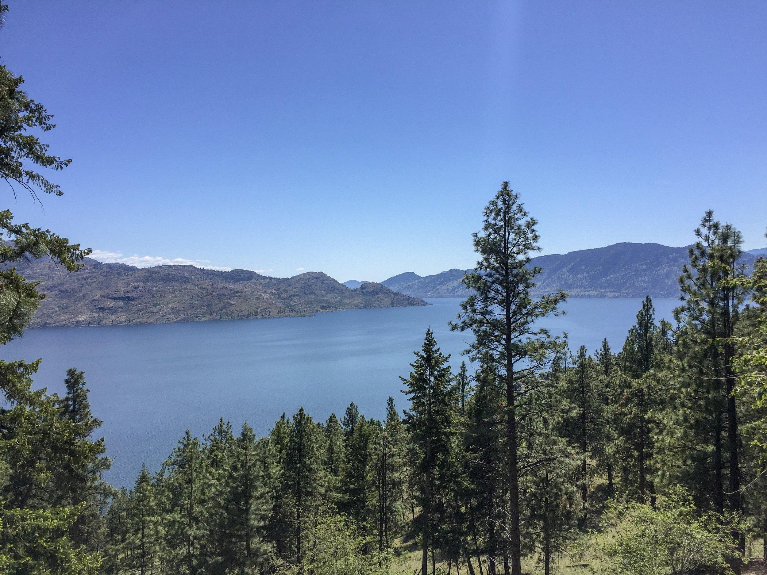 view-okanagan-lake-from-ponderosa-neighbourhood-peachland-joshua-elliott.JPG