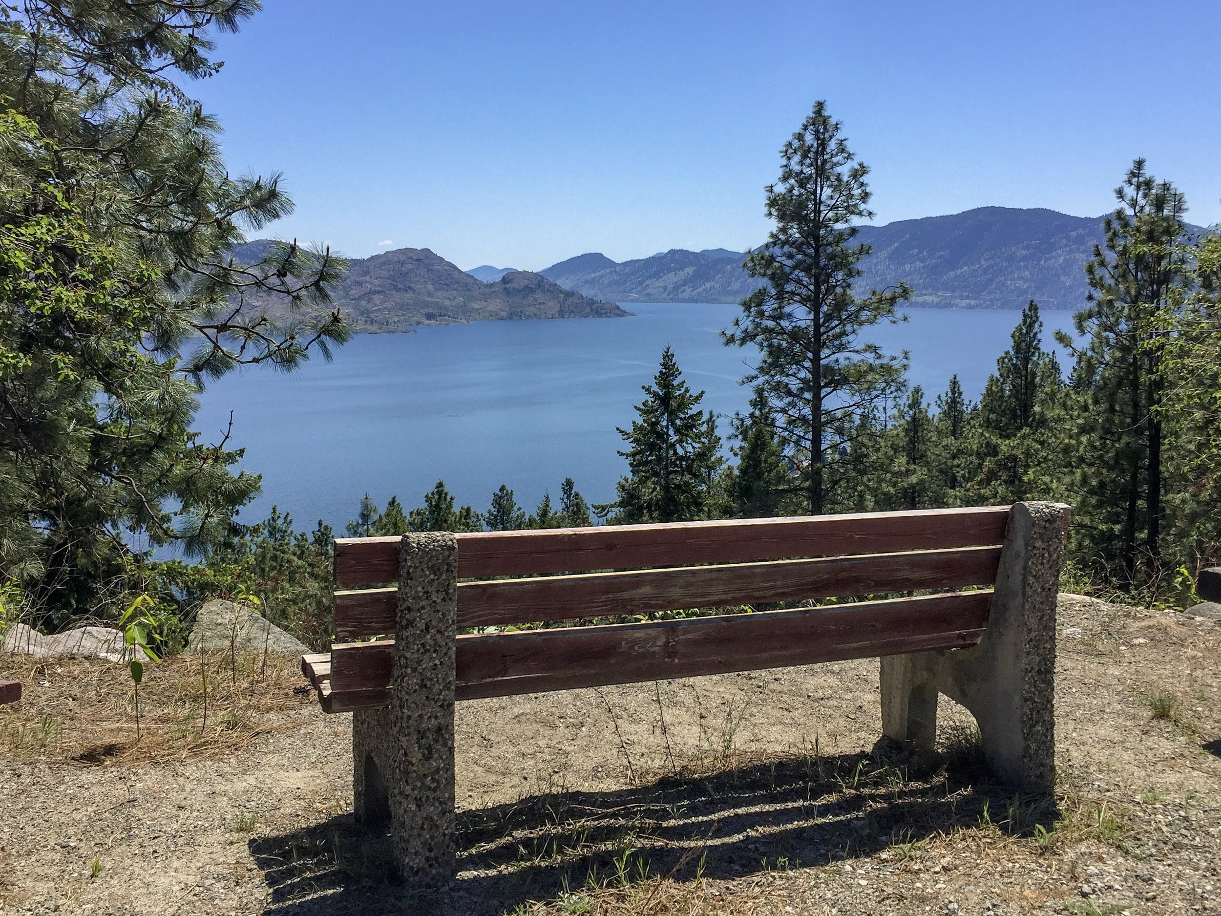 bench-ponderosa-neighbourhood-peachland-joshua-elliott.JPG