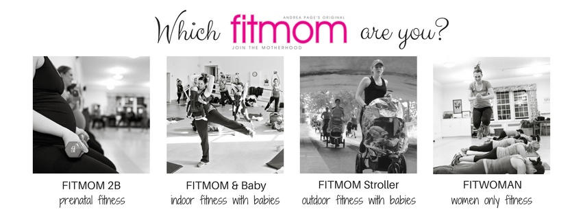 Which_FITMOM_are_you