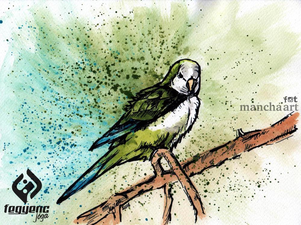 papagaj logo.jpg