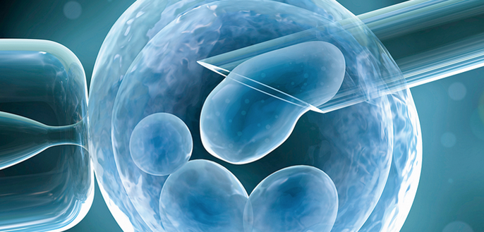 FYI - In Vitro Fertilization  is a one assisted reproductive technology (ART) commonly referred to as  IVF .  IVF  is the process of fertilization by manually combining an egg and sperm in a laboratory dish, and then transferring the embryo to the uterus.