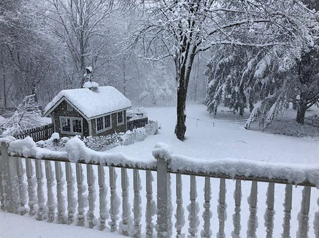 Snowy day, call us for rescheduling appointments at 973-984-2800 or visit the website! Drive safe if out and about #acupuncture #morristownnj