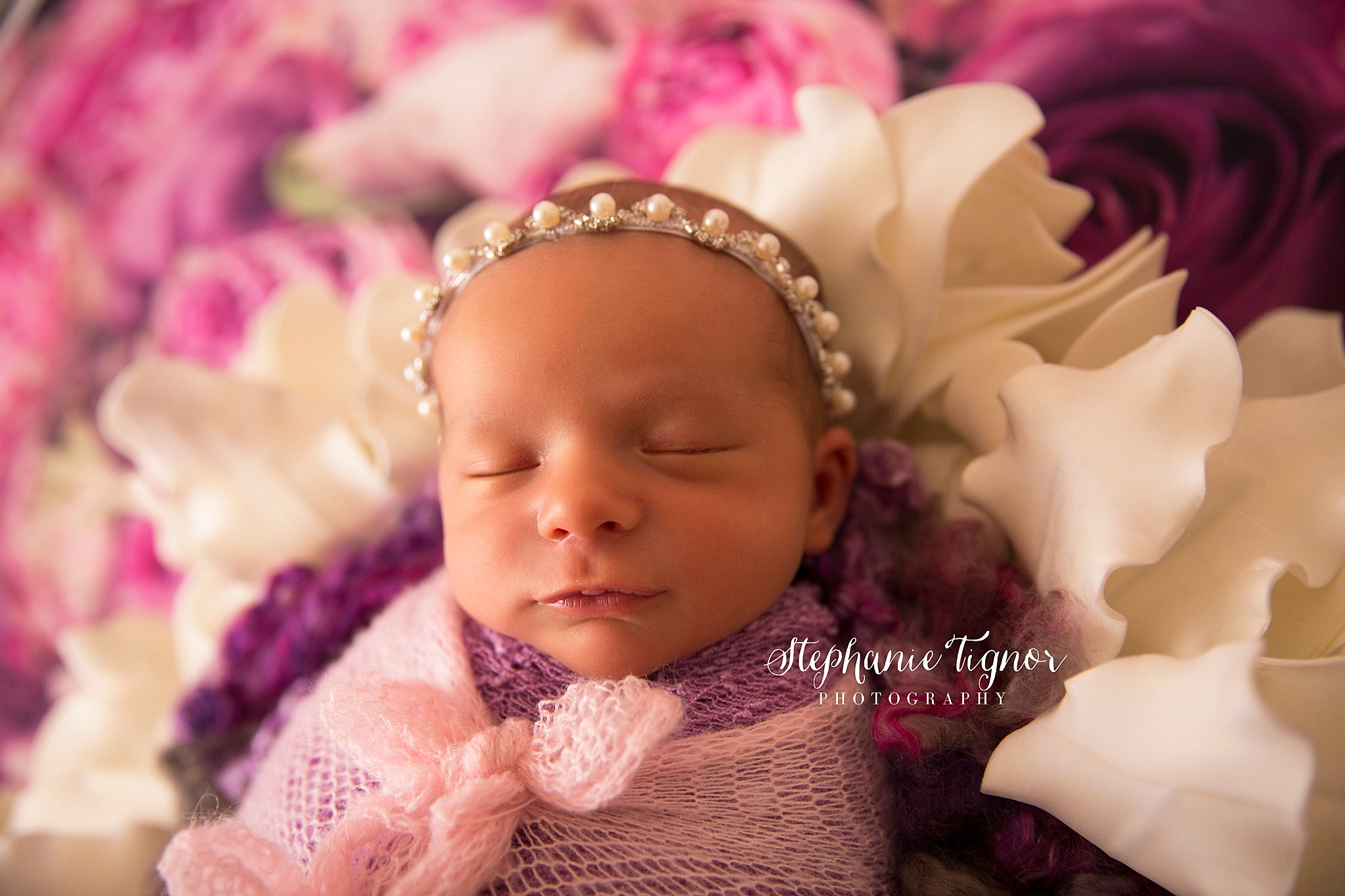 Stephanie Tignor Photography   Fredericksburg VA Newborn Photographer   Warrenton VA Newborn Photographer   Stafford VA Newborn Photographer   Newborn Photographer