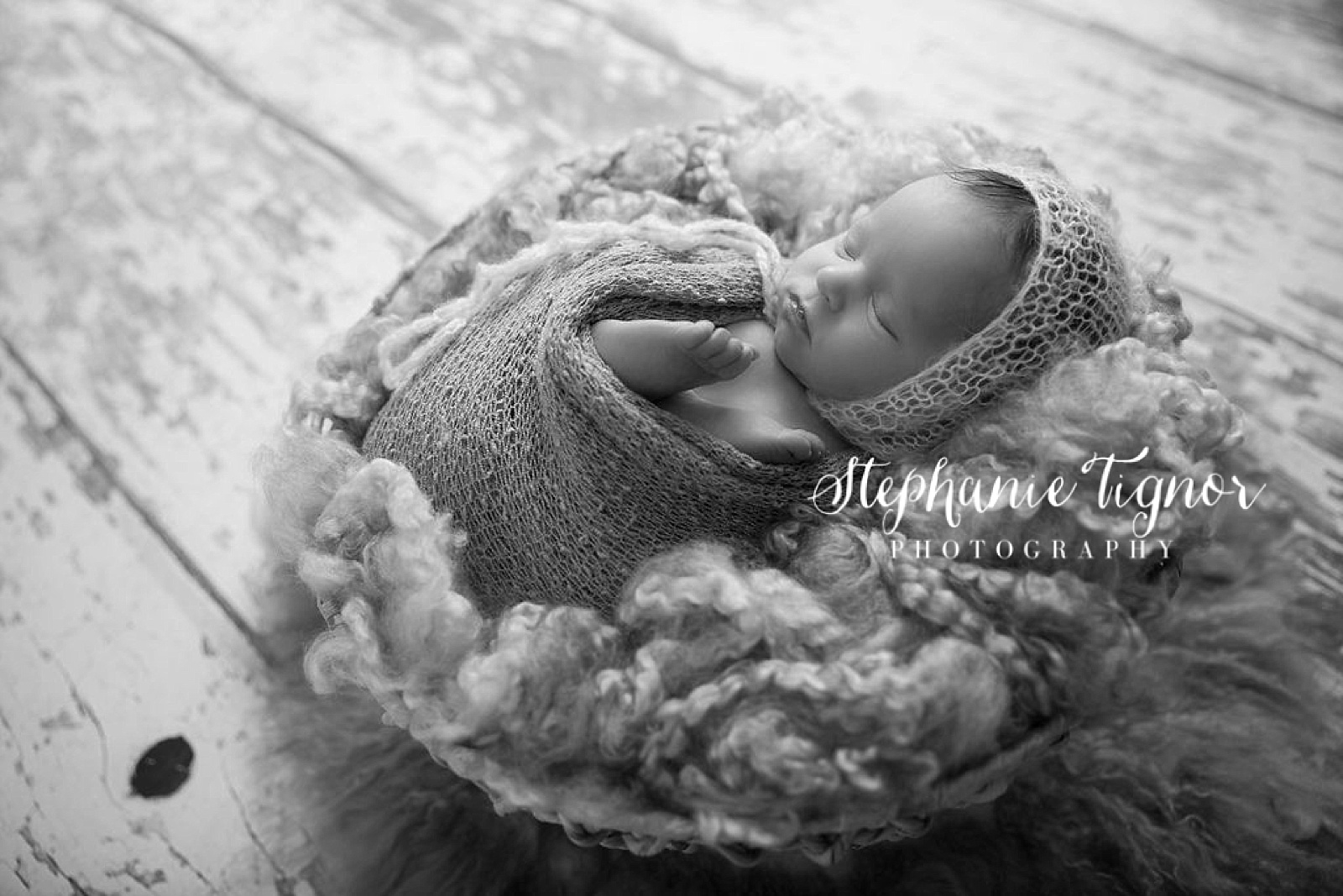 Stephanie Tignor Photography | Fredericksburg VA Newborn Photographer | Warrenton VA Newborn Photographer | Stafford VA Newborn Photographer | Newborn Photographer | Fairfax VA Newborn Photographer | Spotsylvania VA Newborn Photographer | Virginia Newborn Photographer