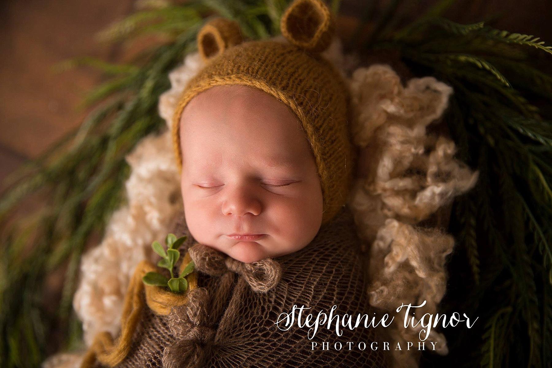 Stephanie Tignor Photography | Fredericksburg VA Newborn Photographer | Warrenton VA Newborn Photographer | Stafford VA Newborn Photographer | Newborn Photographer, spring inspired newborn portraits, spring portraits, baby portraits