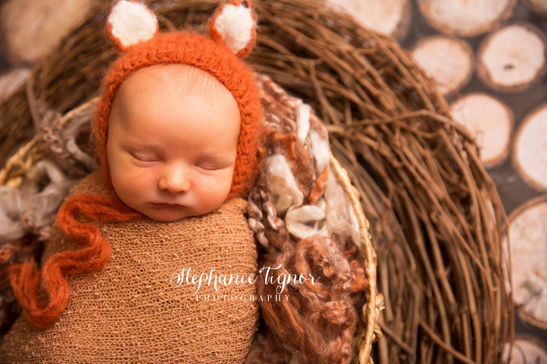 Stephanie Tignor Photography | VA Newborn Photographer, Newborn photographer, DC newborn photographer, Fredericksburg VA newborn photographer, Spotsylvania Newborn photographer, Warrenton VA newborn photographer, NOVA newborn photographer, fall newborn portraits