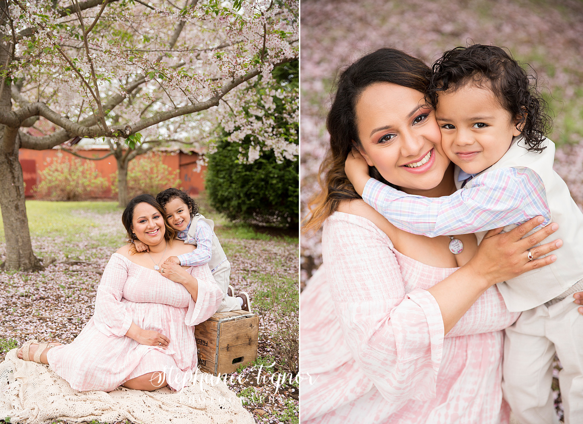 Stephanie Tignor Photography | Fredericksburg VA Family Photographer | Warrenton VA Family Photographer | Stafford VA Family Photographer | Family Photographer | Fairfax VA Family Photographer | Spotsylvania VA Family Photographer | Virginia Family Photographer | Mommy and Me session, mommy and me, cherry blossom session, cherry blossoms