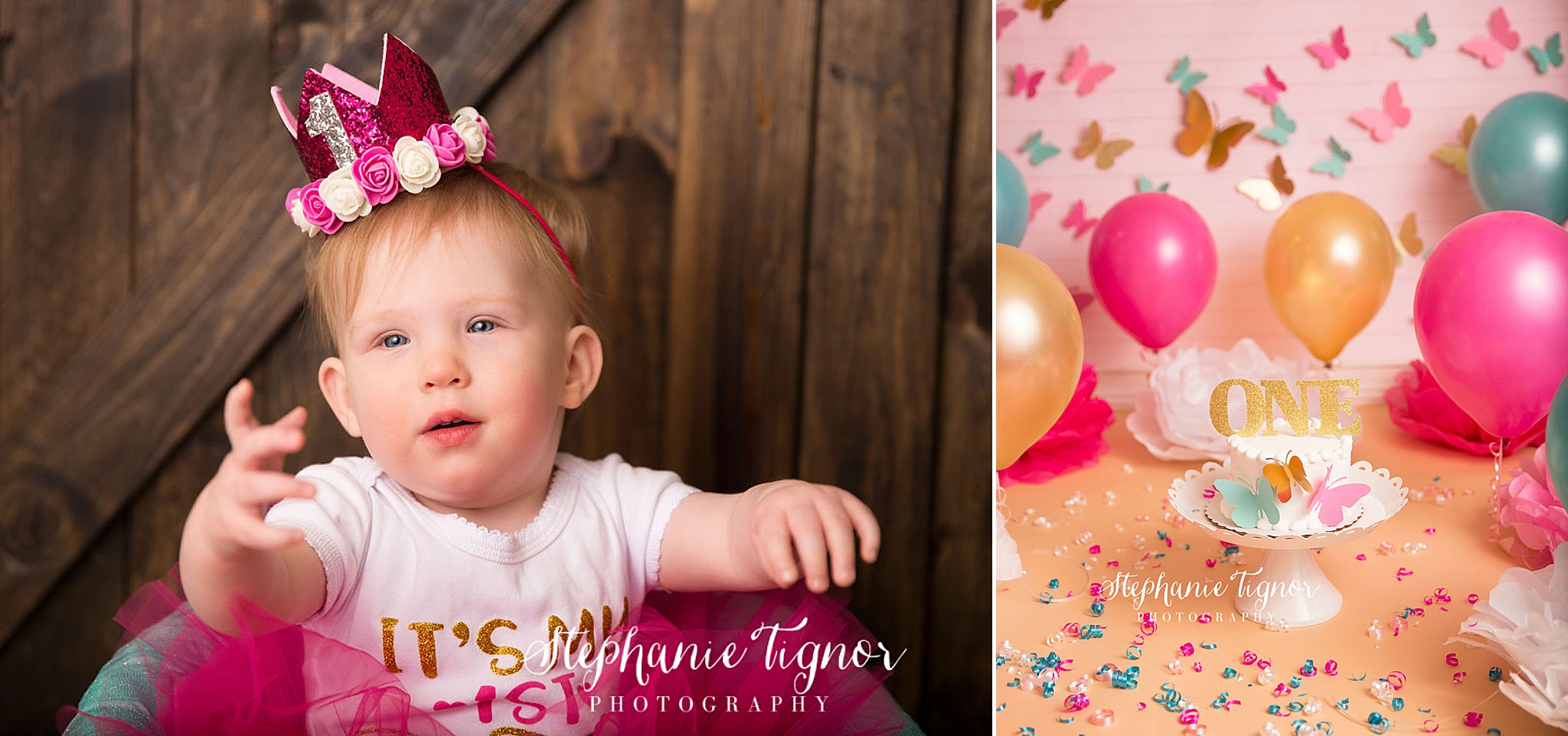 Stephanie Tignor Photography | Fredericksburg VA Cake Smash Photographer | Warrenton VA Cake Smash Photographer | Stafford VA Cake Smash Photographer | Cake Smash Photographer , butterfly cake smash, spring cake smash, pink cake smash