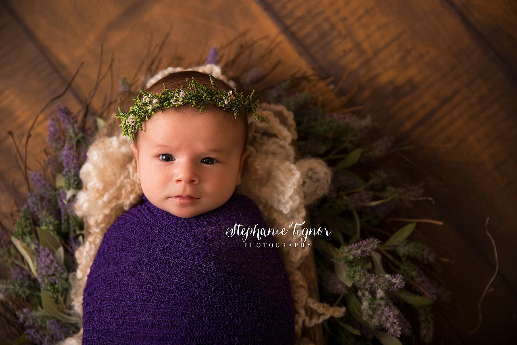 Stephanie Tignor Photography | Fredericksburg VA Newborn Photographer | Warrenton VA Newborn Photographer | Stafford VA Newborn Photographer | Newborn Photographer, swaddle newborn session, swaddled baby, swaddled newborn, baby photos