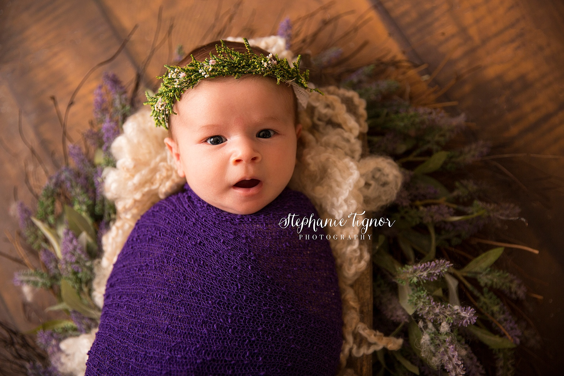 Stephanie Tignor Photography | Fredericksburg VA Newborn Photographer | Warrenton VA Newborn Photographer | Stafford VA Newborn Photographer | Newborn Photographer, swaddle newborn session, swaddled baby, swaddled newborn, baby photos