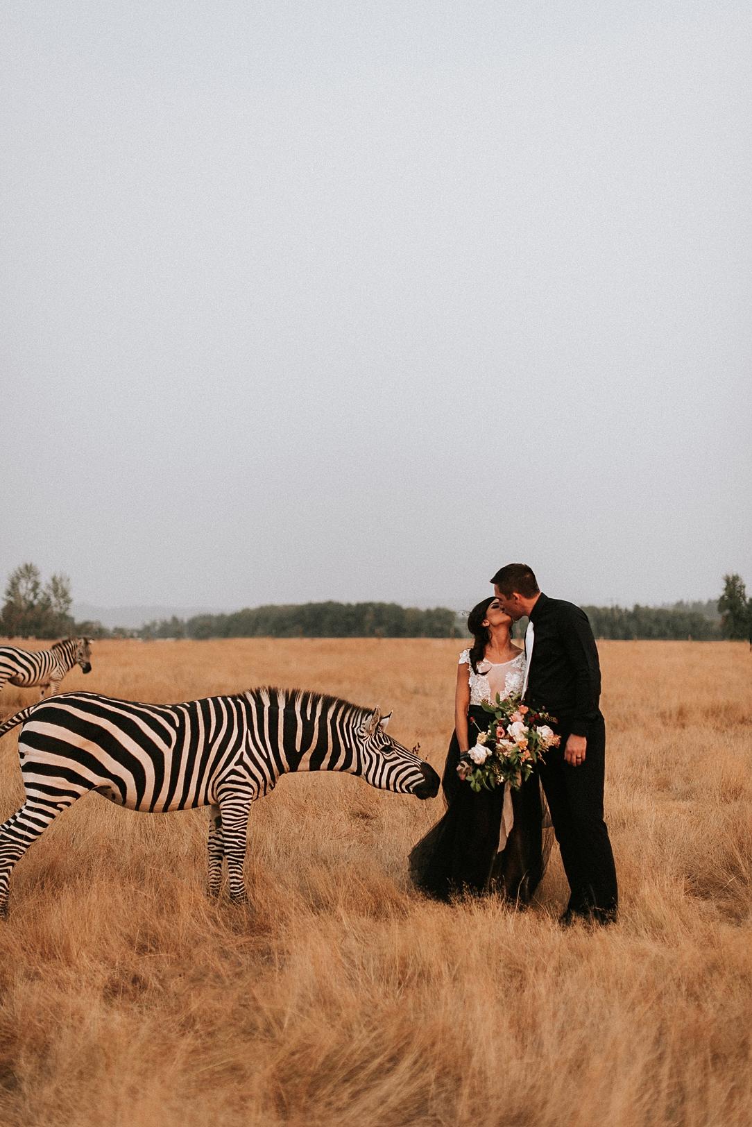 nbp-moody-safari_0002.jpg