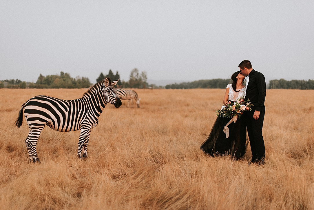 nbp-moody-safari_0001.jpg